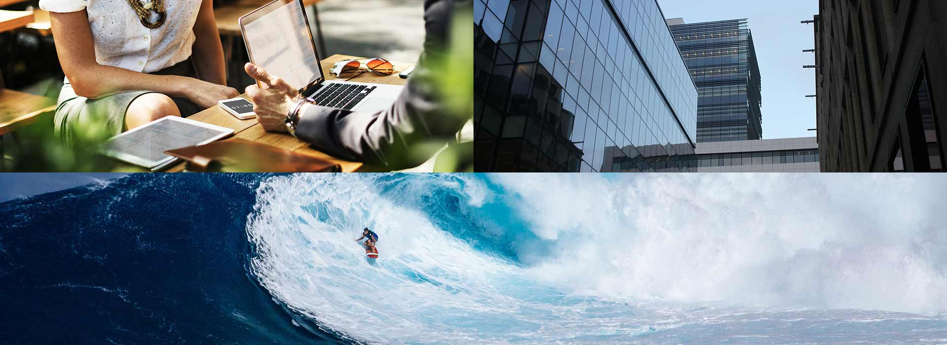 L'avenir du surf sur la toile